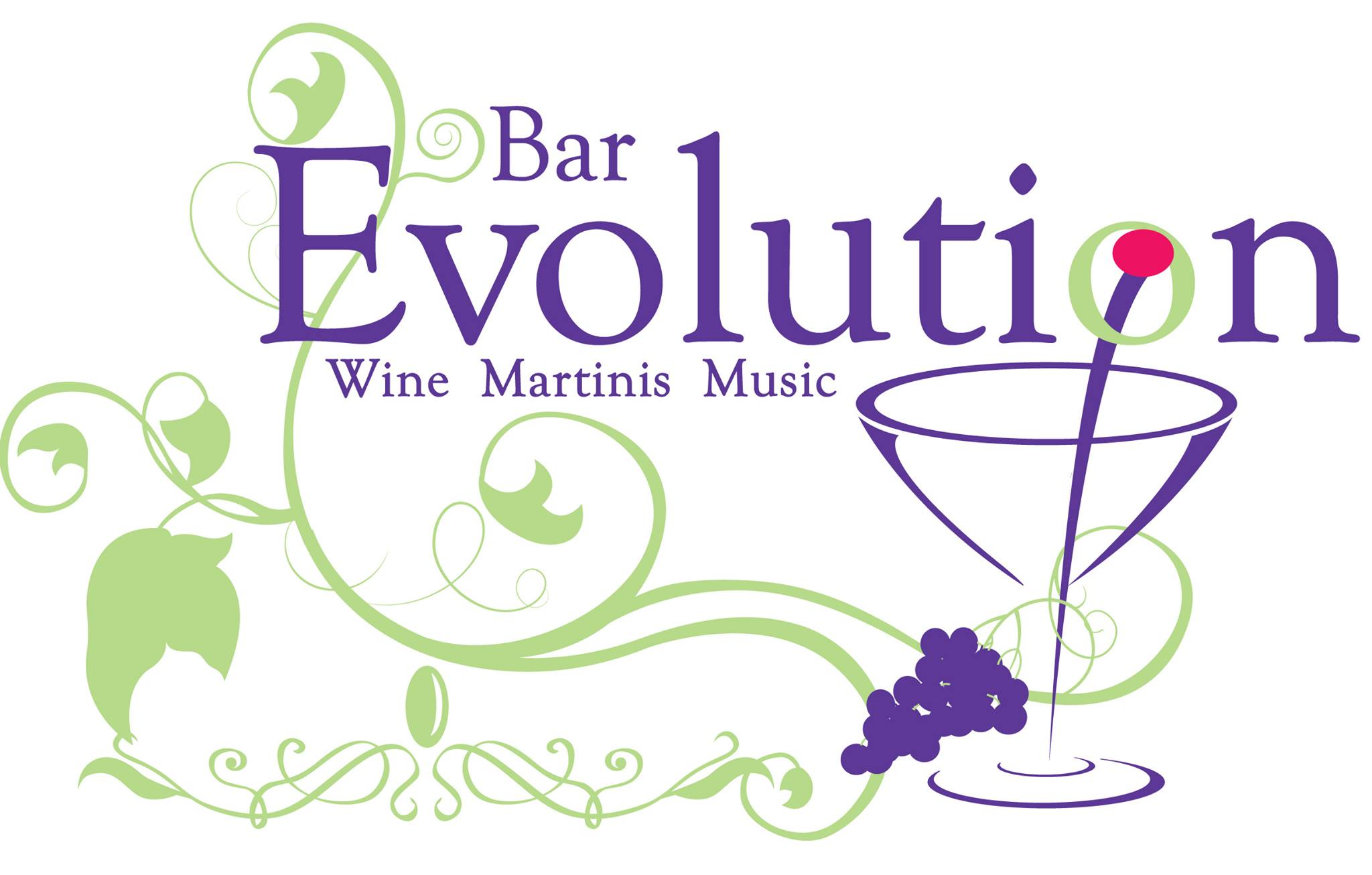 Bar Evolution