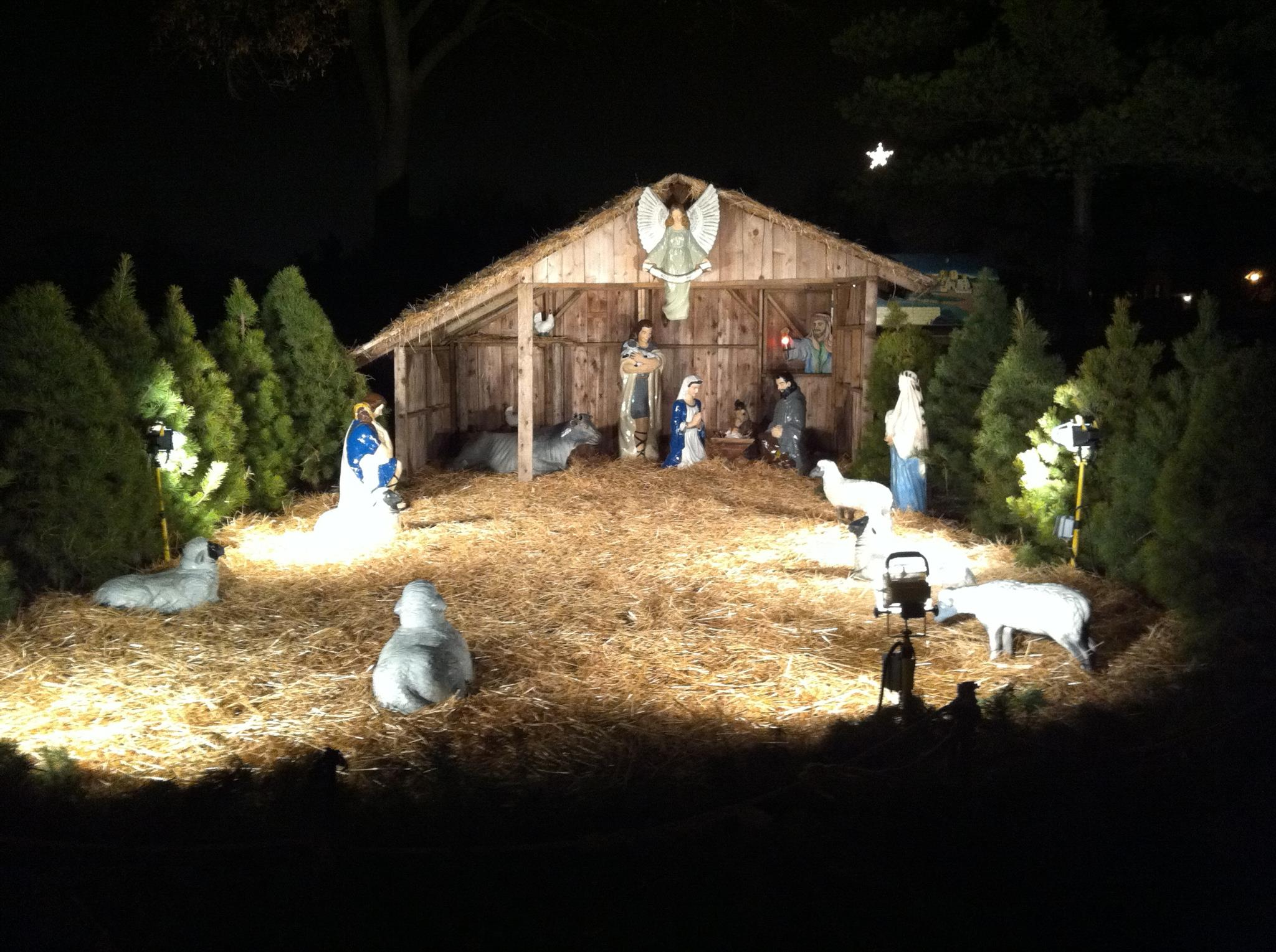 Lehnertz Avenue Christmas Display