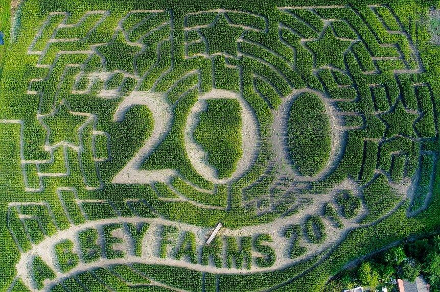 /abbey-farms-pumpkin-daze-fall-things-to-do-aurora