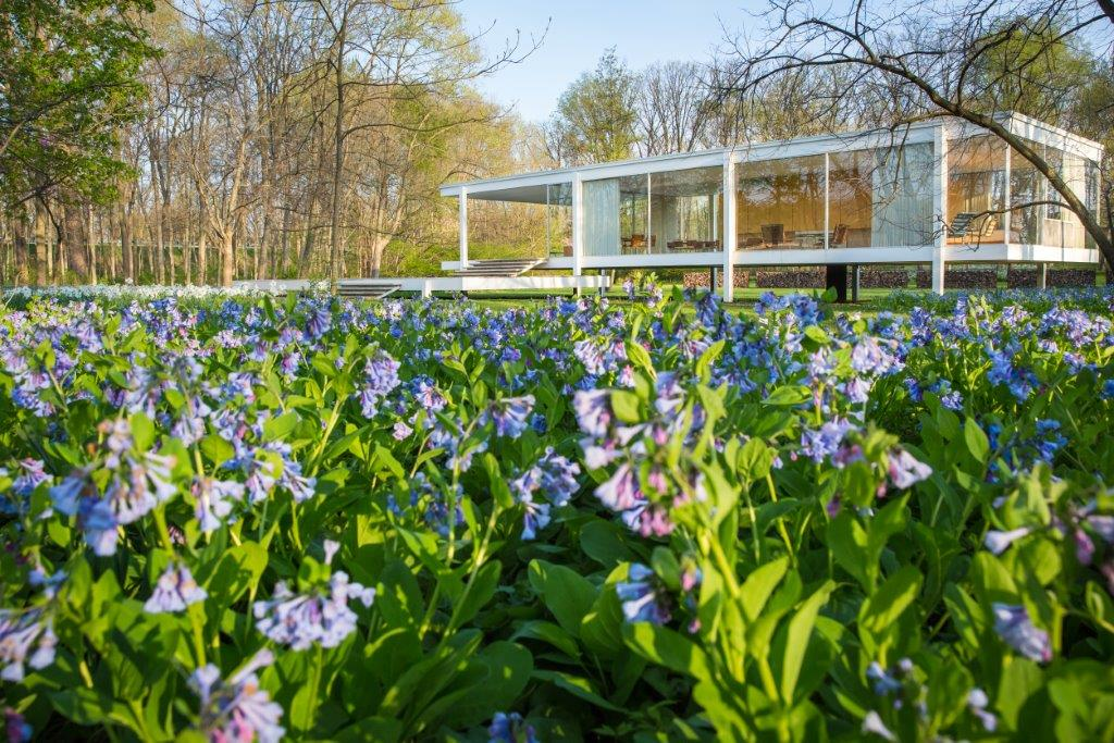 edith-farnsworth-house-in-the-country-2020